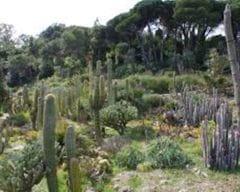 Jardins botànics Marimurtra