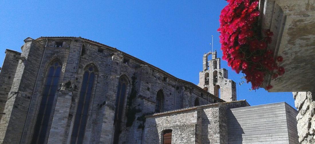 Concurs de fotografies florals de Banyoles