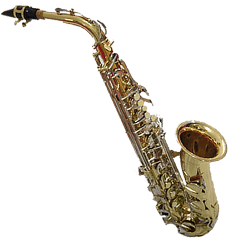 Alfa img - Showing > Saxophone Form of Cat