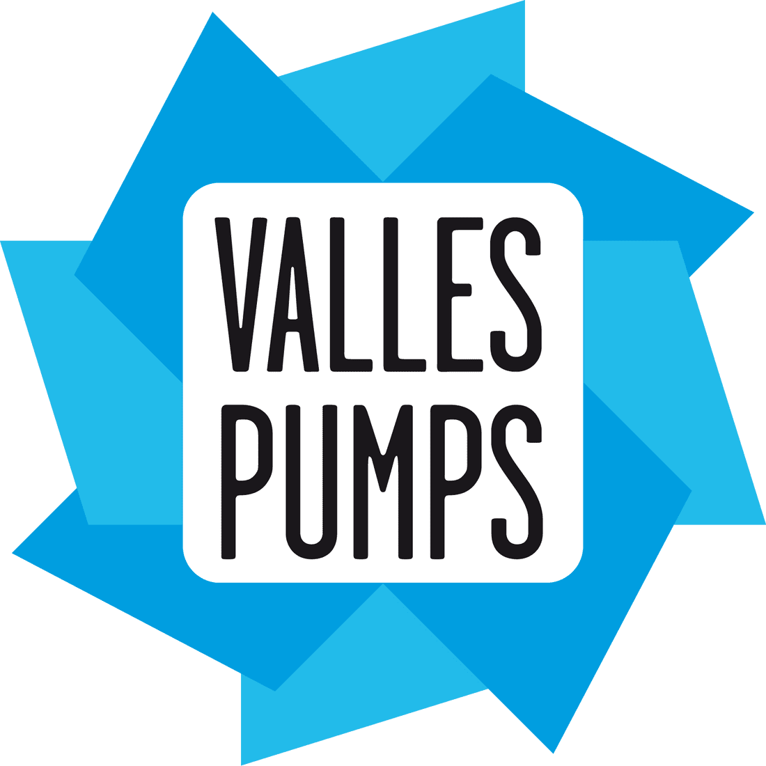 Valles Pumps