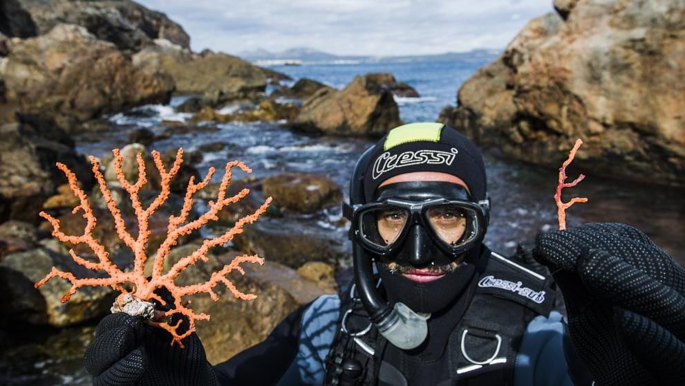 Talles que minven. Aquest agent de la Generalitat ensenya, al Cap de Begur, com era abans (anys seixanta) el corall a la Costa Brava i com és ara (Xavier Cervera)