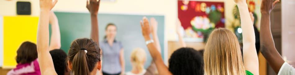 Escoles i Llars d'infants