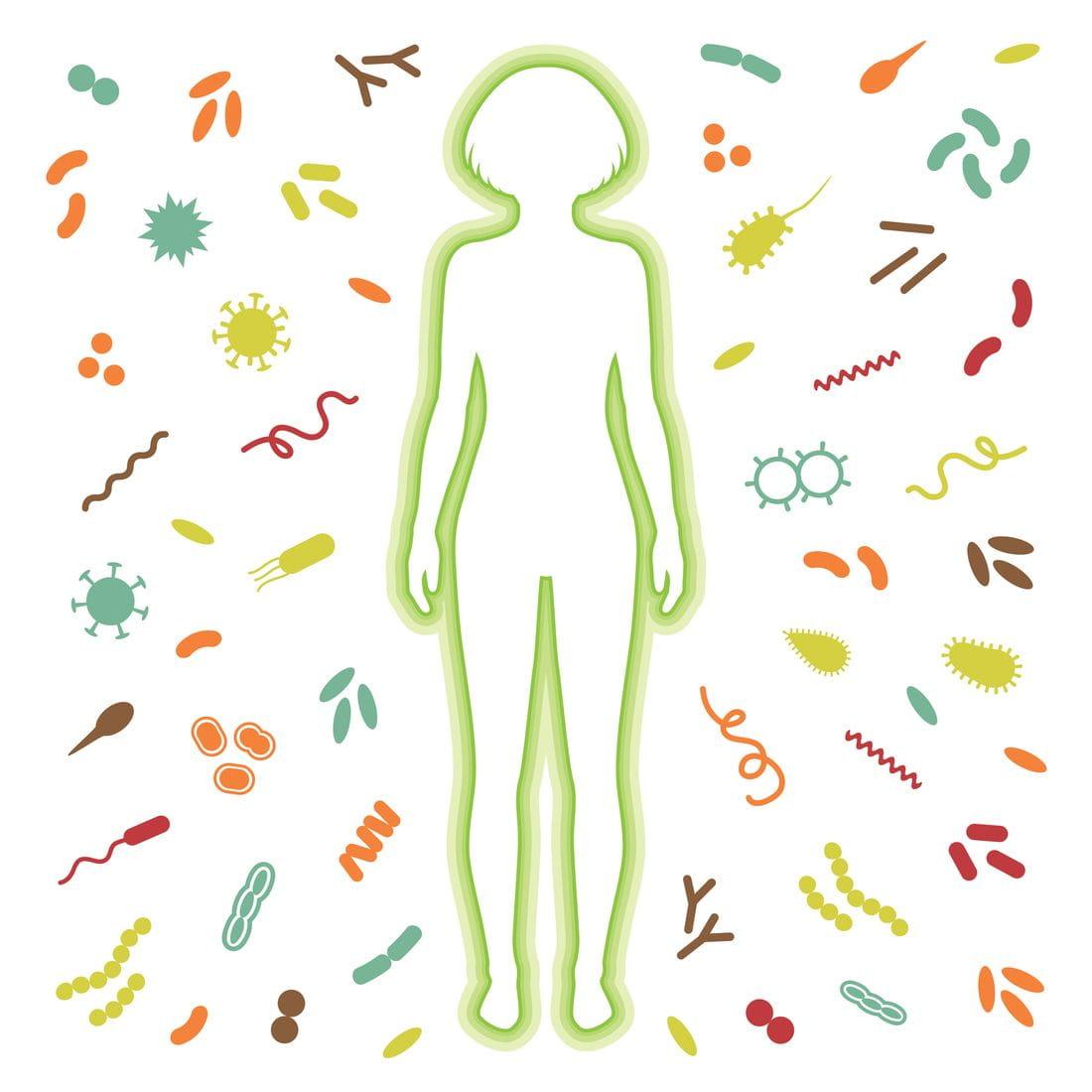 Изучение микробиоты