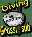 Grassi Sub