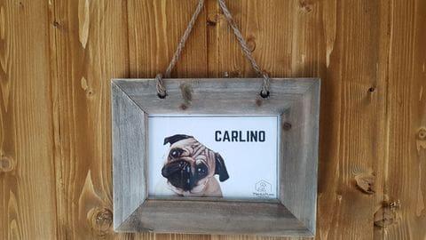 Suite Carlino