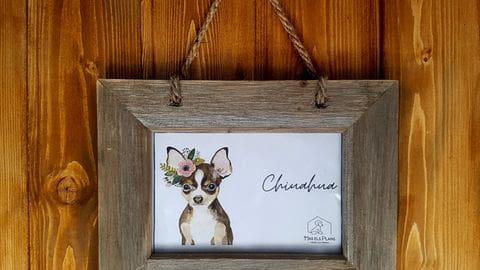 Habitació Chihuahua