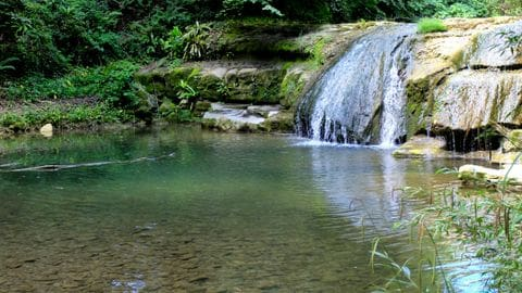 Pozas y cascadas