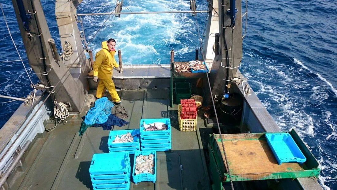 Pescaturisme - Armonia Uno